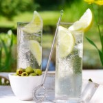 Gin Tonic: How to prepare