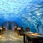 Three restaurants to eat between fish